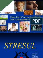 253541496-Stresul-Ix.ppt