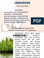 Eksplorasi Mangrove
