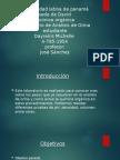 informe de organica analisis de -orina