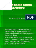 Trombosis Sinus Kavernosus