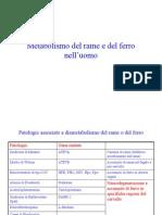 metabolismo del rame e del ferro