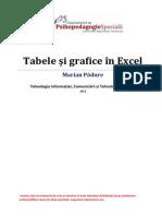 Modulul 2 - TIC-TA - Tabele Si Grafice in MS Excel 2013
