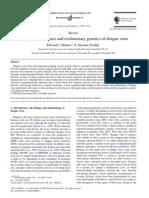 The Origin, Emergence and Evolutionary Genetics of Dengue Vi