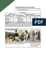 Fichas Seguimiento de Proyecto Pincos Toxama