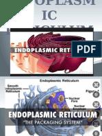 chapter 9 endoplasmic reticulum