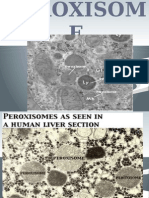 chapter 11 peroxisome
