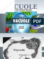 chapter 12vacuole