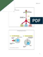 223.20 Principles of Cell Signaling2015