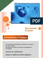 Inclusiones-Fluidas-ppt
