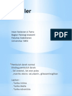Vaskuler Aterosklerosis