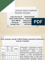 Pola Tanam Pada Sawah Tadah Hujan