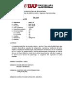 Sillabus - Inglés II - Administración
