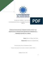 Sistema de Protección Del Patrimonio Natural en Chile y Sus Desafíos Ante El Proceso de Declaratoria de Patrimonios de La Humanidad Por Parte de La Unesco