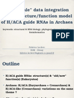 Multiscale data integration into a structure/function model of H/ACA guide RNAs in Archaea