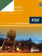 Capitaliza_Nacionaliz_hidrocarburos.pdf