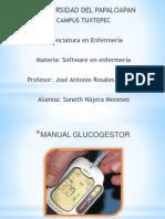 MANUALES DE GLU COGESTOR, SIDIARY Y COMPARADOR NUTRICIONAL DE FRUTAS