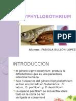 17.- DIPHYLLOBOTRIUM