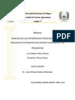 ANALISIS-DE-LAS-DIFERENCIAS-FISIOLOGICAS-DE-LOS-PROCESOS-FOTOSINTETICOS-ENTRE-PLANTAS-C3-Y-C4 (1).pdf