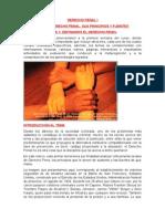 DERECHO PENAL I.docx