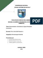 Bioremediación microbianas en aguas residuales domesticas