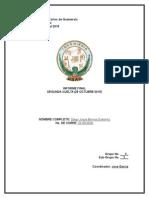 Informe Final Plantilla Observatorio
