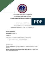 Informe N° 01