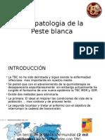 Fisiopatológica de La Peste Blanca