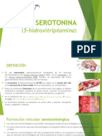 Serotonina y Noradrenalina