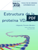 Estructura VDAC-1