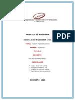 INFORME DE FIUDOS PSEUDOPLASTICO.docx