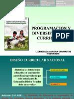 01-Programacion y Diversificacion