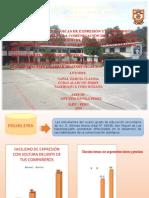 DIAPOSITIVAS DE SUSTENTACION.pptx