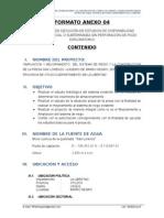 FORMATO ANEXO 04.docx