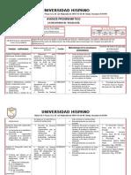 Formato Avance Programã-tico Licenciatura2