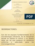 Biorreactores EQUIPO 1