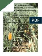 Monogragia Requerimientos Nutricionales y La Fertilización Del Cultivo de Piña