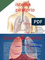 trabajo del sistema respiratorio.pptx
