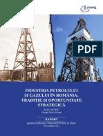 Raport  Industria Petrolului Gazului