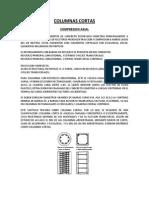 8. Columnas Cortas (1)