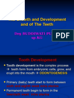 2013 Lecture 2 Development Tooth