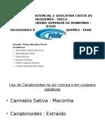 Apresentação de Slides Farmacologia II.pptx