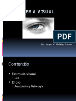 El+Sistema+Visual