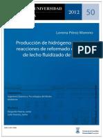 Producción de hidrógeno en reactor de lecho fluidizado