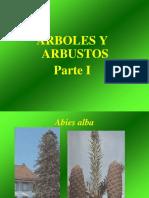 Arboles y Arbusto Parte I
