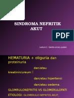 K - 13 Sindrom Nefritik Akut (Ilmu Penyakit Dalam)