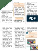 Leaflet Senam Lansia