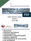 Seguro Social Accident Es