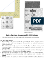 Cell Culture Introduction