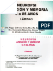 Neuropsi- Laminas