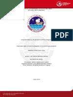 Tesis Inv Publica y Desarrollo Economico Regional PUCP 2013